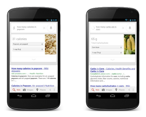 google search nutrition info